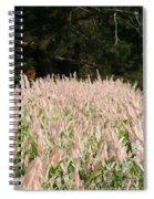Pink Flames Spiral Notebook