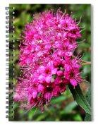 Pink Spirea Spiral Notebook
