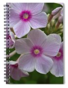 Pink Wood-sorrel  Spiral Notebook