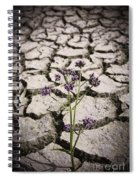 Plant Growing Through Dirt Crack During Drought   Spiral Notebook