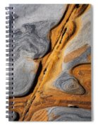 Point Lobos Abstract 4 Spiral Notebook