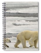 Polar Bear With Cub Spiral Notebook