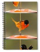 Pole Dancer Spiral Notebook