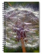 Poof Spiral Notebook