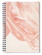 Portrait Head Spiral Notebook