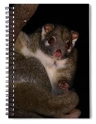 Possum Spiral Notebook