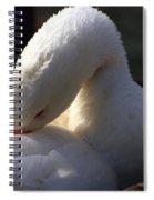Preening Goose Spiral Notebook