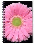 Pretty Pink Gerbera Daisy Spiral Notebook