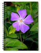 Pretty Purple Pinwheel Spiral Notebook