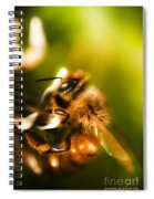 Process Of Pollination Spiral Notebook
