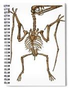 Pterodactylus, Extinct Flying Reptile Spiral Notebook