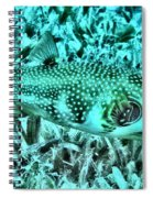 Puffer Fish Spiral Notebook