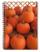 Pumpkins On Pumpkin Patch Spiral Notebook