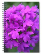 Purely Purple Spiral Notebook