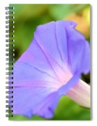 Purple Morning Glory Spiral Notebook