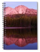 Purple Reflections Spiral Notebook