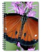 Queen Butterfly Spiral Notebook
