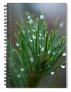 Raindrops On Pine Spiral Notebook