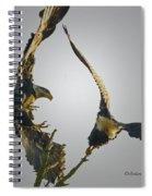 Raw  Spiral Notebook