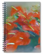 Red Anthurium Spiral Notebook