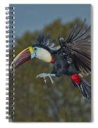 Red-billed Toucan Spiral Notebook