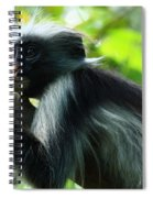 Red Colobus Monkey Spiral Notebook