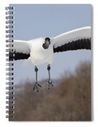 Red-crowned Crane Spiral Notebook