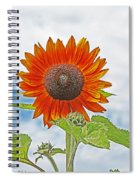 Red Face Sunflower At Olympia Spiral Notebook