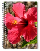 Red For Love Spiral Notebook