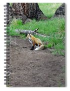 Red Fox In Yellowstone Spiral Notebook