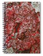 Red Lichen  Spiral Notebook