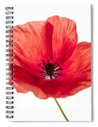 Red Poppy Flower Spiral Notebook
