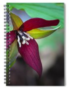 Red Trillium Spiral Notebook