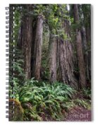Redwood Spiral Notebook