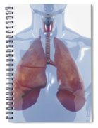 Respiratory System Spiral Notebook