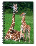 Reticulated Giraffe Calf With Mother Spiral Notebook