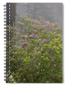 Rhododendron In Del Norte State Park, Ca Spiral Notebook