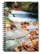 River Flowing Under Stone Bridge Spiral Notebook