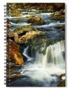 River Rapids Spiral Notebook