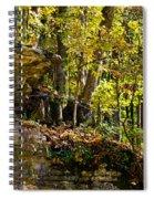 Rock Shelf And Forest Spiral Notebook