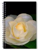 Romance In Bloom Spiral Notebook