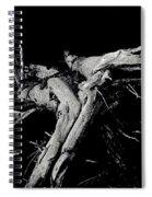 Roots 2 Spiral Notebook