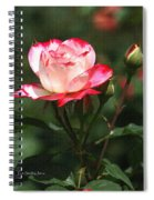 Rose And Bud At Mcc Spiral Notebook