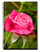 Rose Flower Spiral Notebook