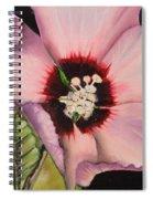 Rose Of Sharon Spiral Notebook