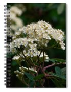 Rowan Flowers Spiral Notebook