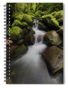 Ruckel Creek  Oregon, United States Spiral Notebook