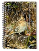 Ruffed Grouse On Drumming Log Spiral Notebook