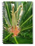 Sago Palm Spiral Notebook