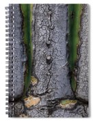Saguaro Cactus Close-up Spiral Notebook